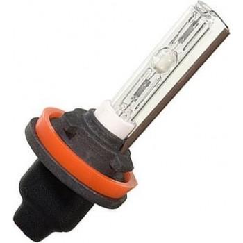 Xenon H8 Lamp 4300K
