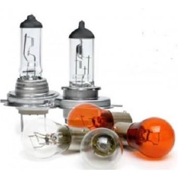 Lampenpakket 12V (130-delig) Neglin