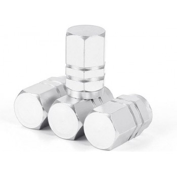 Bandenventiel Aluminium Zilver 4 Stuks